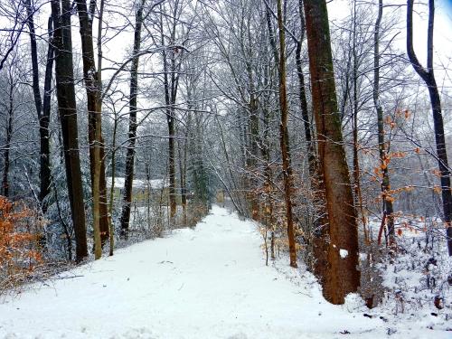 snow 180a