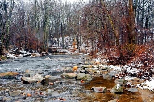 The Big Elk Creek at Fair Hill State Park