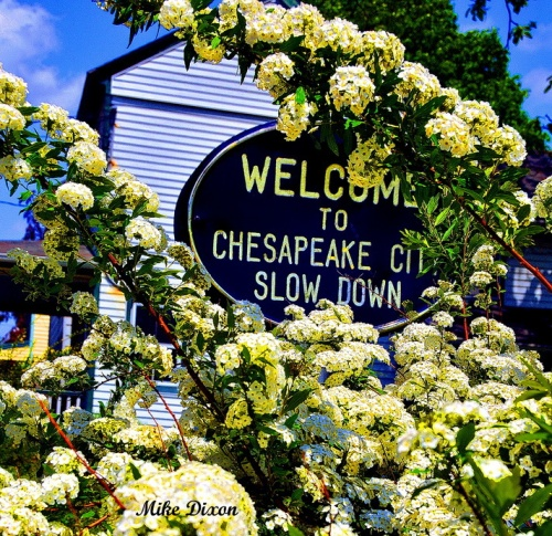 Welcome to Chesapeake City