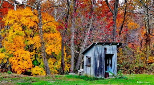 Old Shed along the Little Elk Creek on Kirk Road