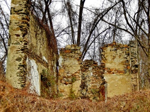 Crumbling stone walls in the Fair Hill Natural Resources Management Area